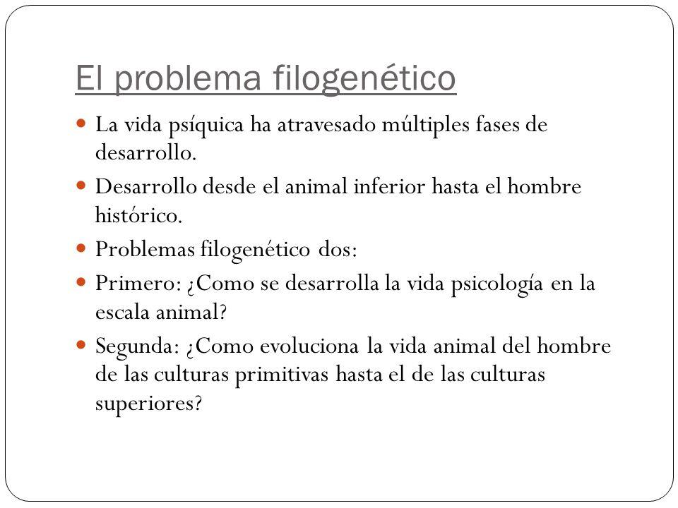 El problema filogenético La vida psíquica ha atravesado múltiples fases de desarrollo.