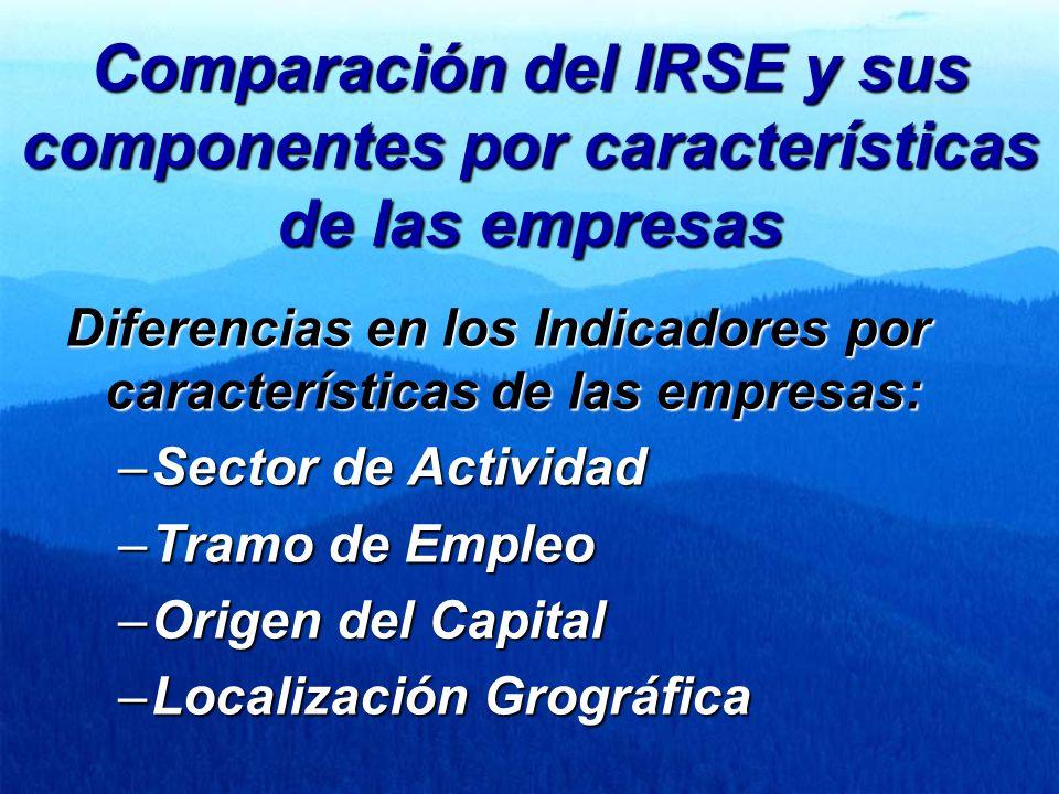 Comparación del IRSE y sus componentes por características de las empresas Diferencias en los Indicadores por características de las empresas: –Sector de Actividad –Tramo de Empleo –Origen del Capital –Localización Grográfica