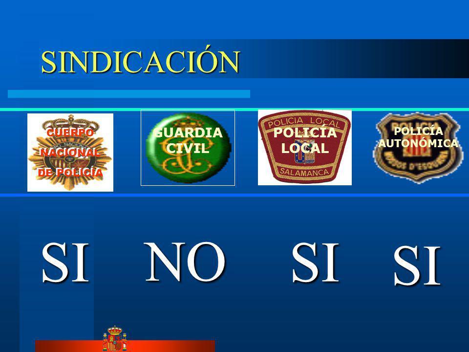 SI SINDICACIÓN GUARDIA CIVIL POLICÍA LOCAL POLICÍA AUTONÓMICA CUERPO NACIONAL DE POLICÍA CUERPO NACIONAL DE POLICÍA SI SI NO