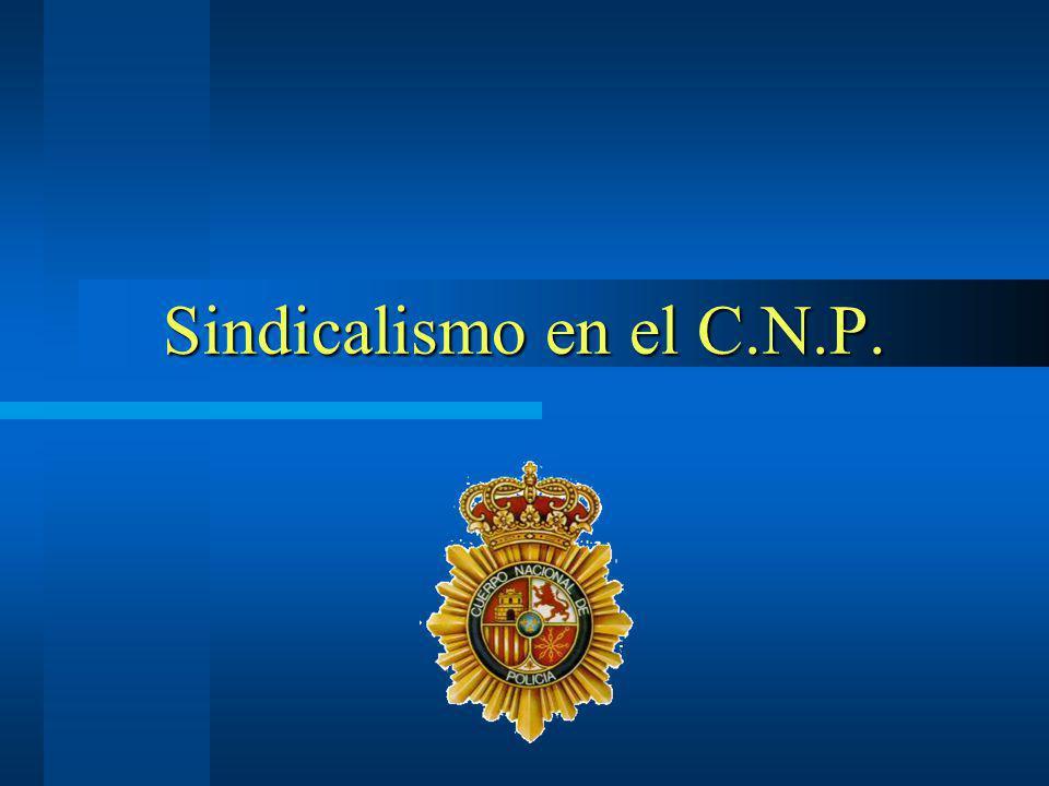 Sindicalismo en el C.N.P.