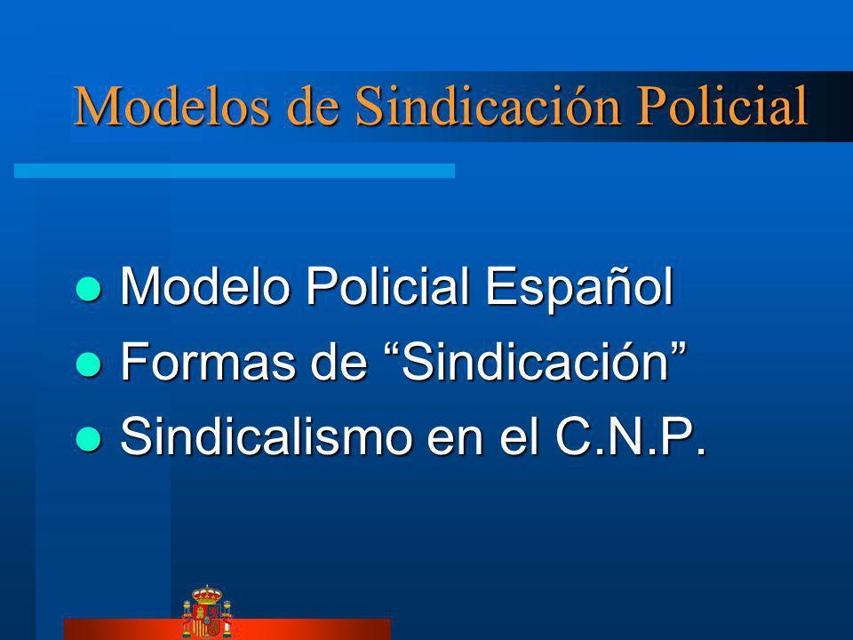 Modelos de Sindicación Policial Modelo Policial Español Modelo Policial Español Formas de Sindicación Formas de Sindicación Sindicalismo en el C.N.P.