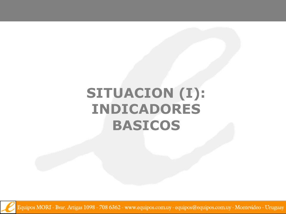 SITUACION (I): INDICADORES BASICOS
