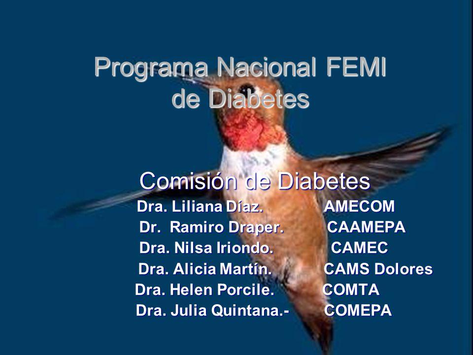 Programa Nacional FEMI de Diabetes Comisión de Diabetes Dra.