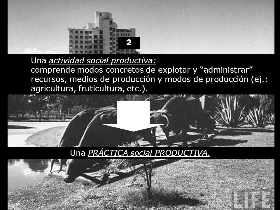 2 Una actividad social productiva: comprende modos concretos de explotar y administrar recursos, medios de producción y modos de producción (ej.: agri