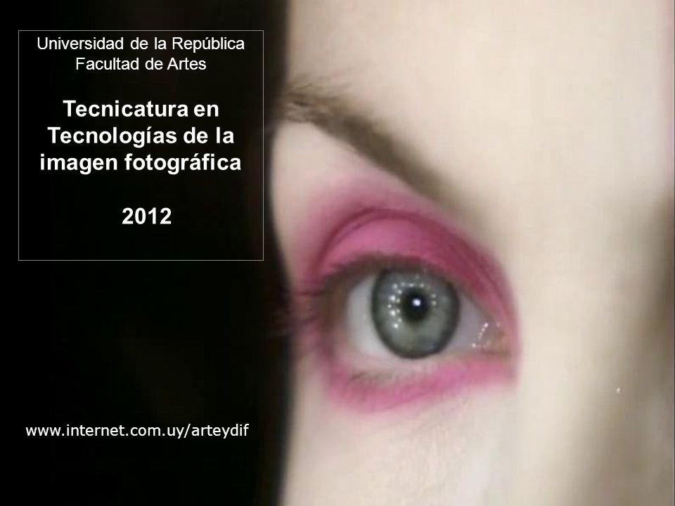 Universidad de la República Facultad de Artes Tecnicatura en Tecnologías de la imagen fotográfica 2012 www.internet.com.uy/arteydif