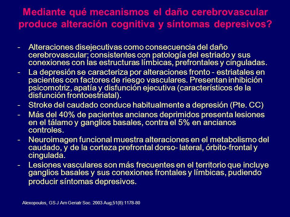 Mediante qué mecanismos el daño cerebrovascular produce alteración cognitiva y síntomas depresivos? -Alteraciones disejecutivas como consecuencia del