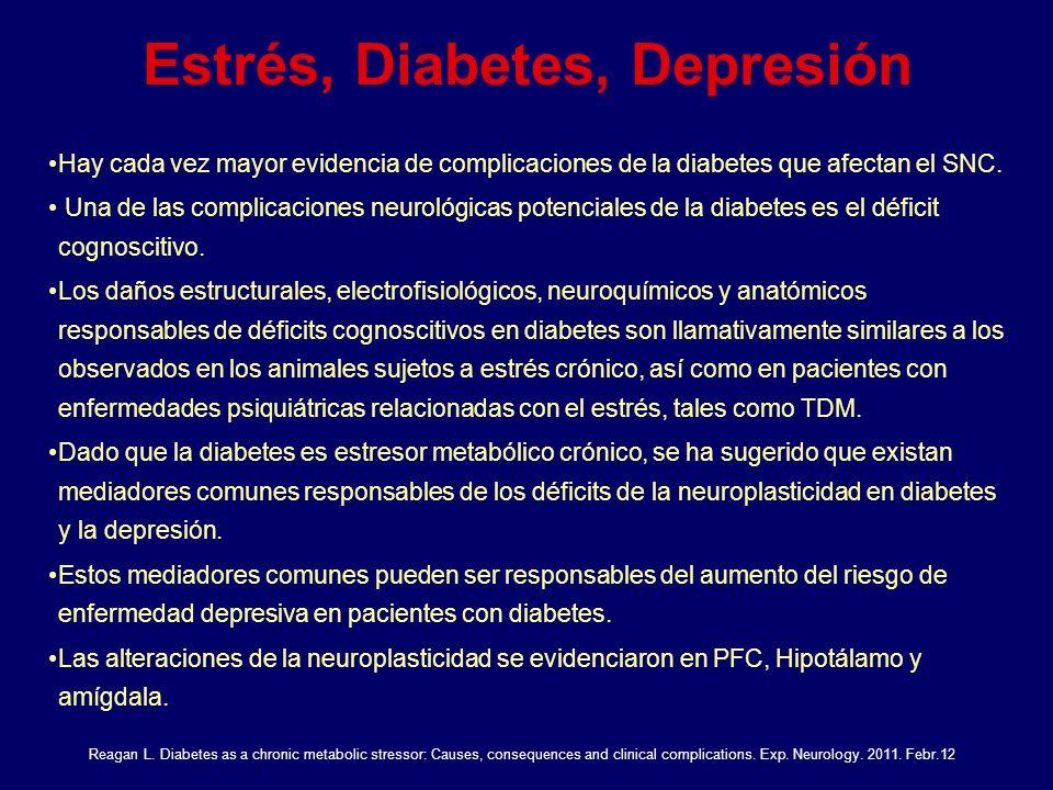Estrés, Diabetes, Depresión Hay cada vez mayor evidencia de complicaciones de la diabetes que afectan el SNC. Una de las complicaciones neurológicas p