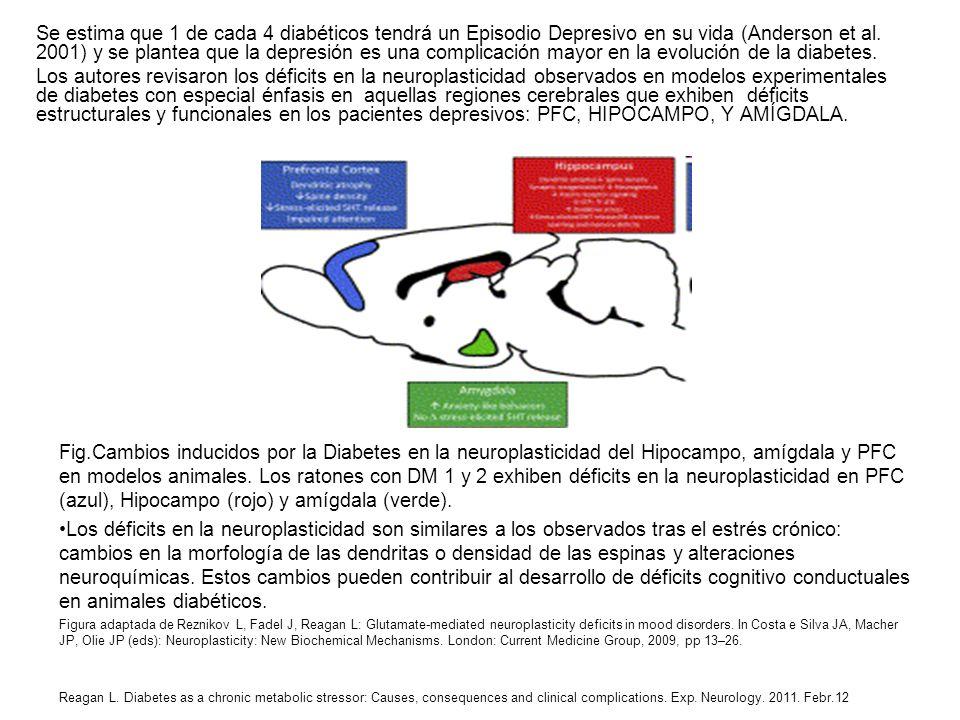 Se estima que 1 de cada 4 diabéticos tendrá un Episodio Depresivo en su vida (Anderson et al. 2001) y se plantea que la depresión es una complicación