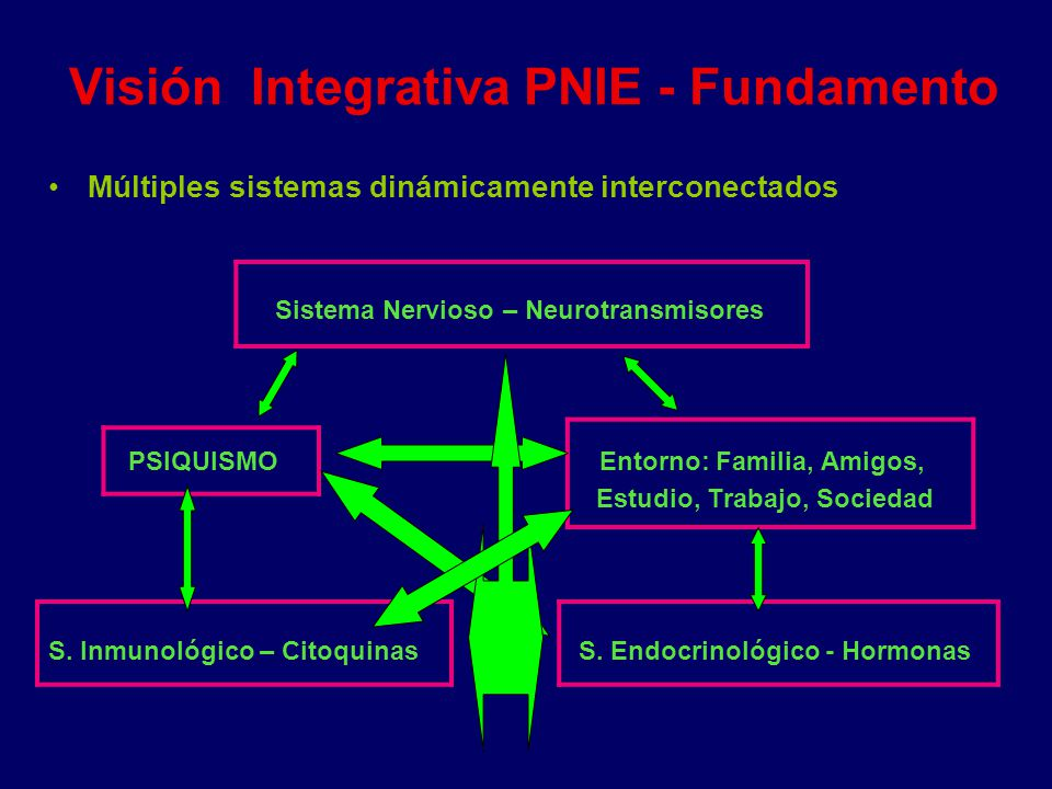 Visión Integrativa PNIE - Fundamento Múltiples sistemas dinámicamente interconectados Sistema Nervioso – Neurotransmisores PSIQUISMO Entorno: Familia,