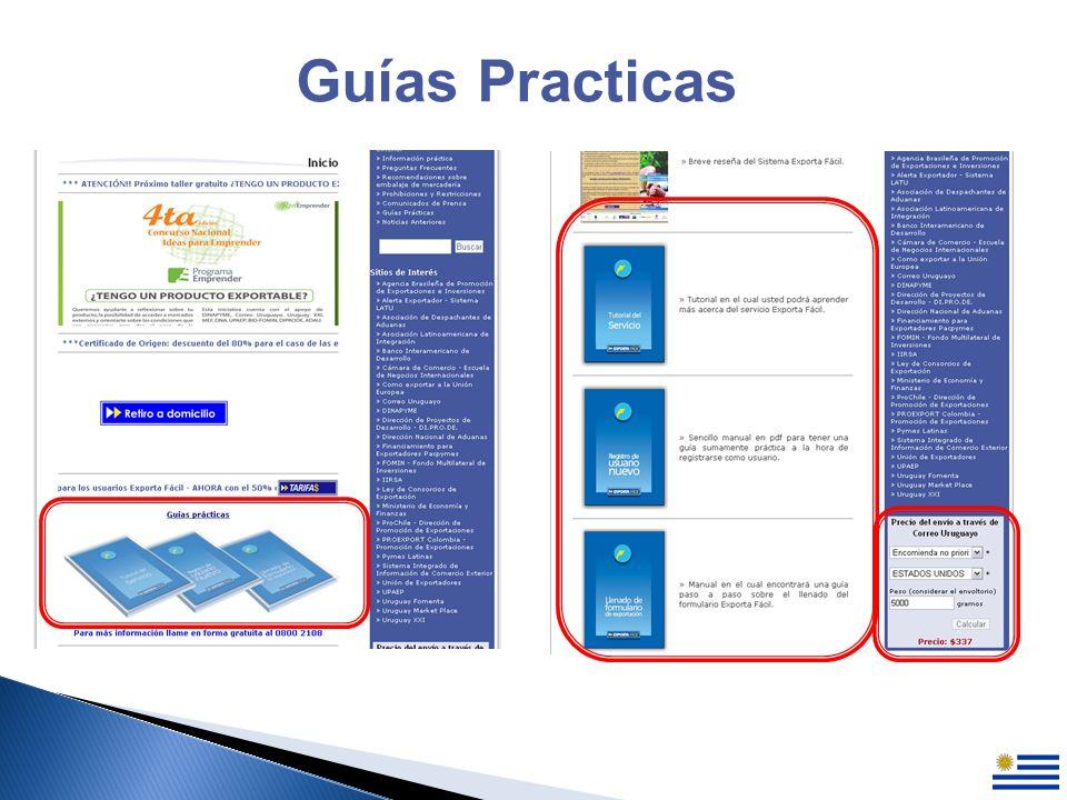 Guías Practicas