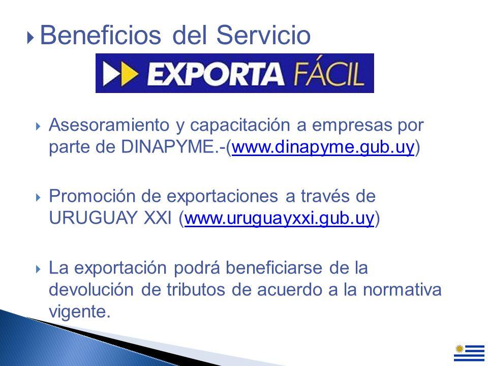 Asesoramiento y capacitación a empresas por parte de DINAPYME.-(www.dinapyme.gub.uy)www.dinapyme.gub.uy Promoción de exportaciones a través de URUGUAY XXI (www.uruguayxxi.gub.uy)www.uruguayxxi.gub.uy La exportación podrá beneficiarse de la devolución de tributos de acuerdo a la normativa vigente.