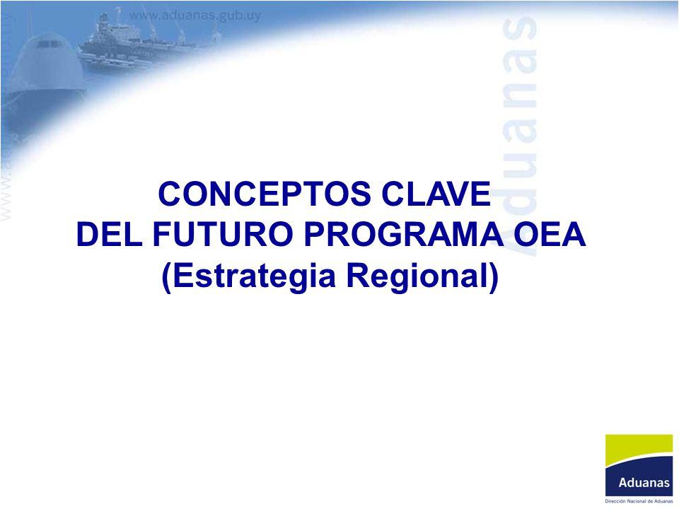 CONCEPTOS CLAVE DEL FUTURO PROGRAMA OEA (Estrategia Regional)