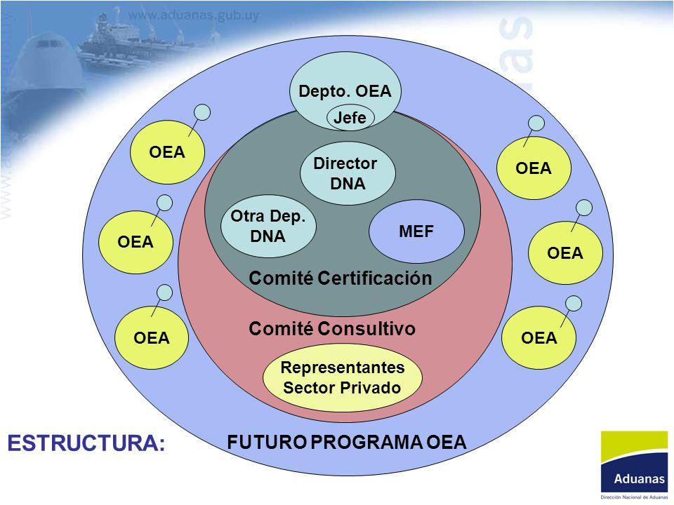Depto. OEA Jefe Director DNA Otra Dep. DNA MEF Representantes Sector Privado FUTURO PROGRAMA OEA Comité Certificación Comité Consultivo OEA ESTRUCTURA