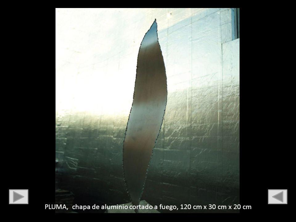 PLUMA, chapa de aluminio cortado a fuego, 120 cm x 30 cm x 20 cm