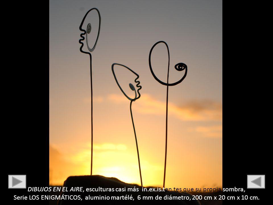 DIBUJOS EN EL AIRE, esculturas casi más in.ex.is.ten.tes que su propia sombra, Serie LOS ENIGMÁTICOS, aluminio martélé, 6 mm de diámetro, 200 cm x 20