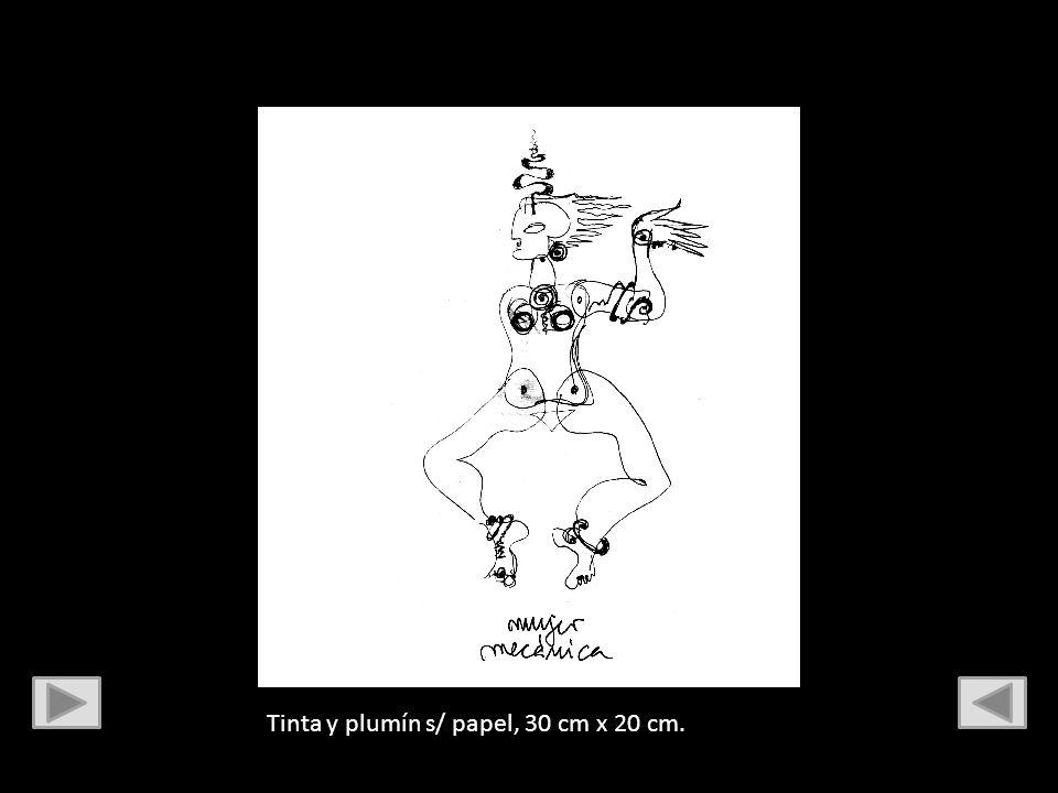 Tinta china, pluma de ganso y plumín s/ papel, 30 cm x 20 cm.
