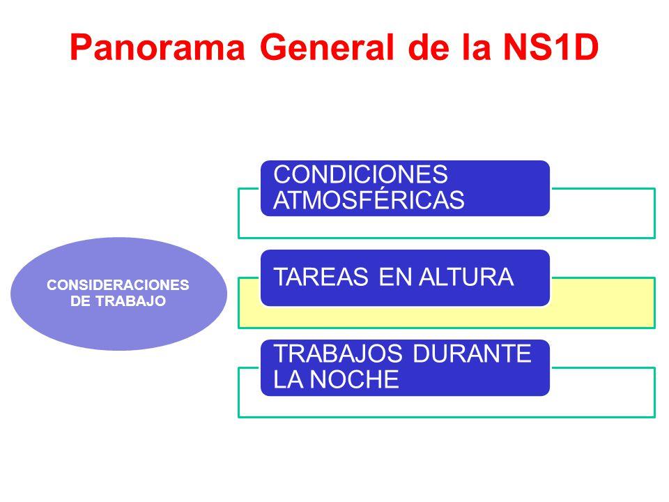 Panorama General de la NS1D CONSIDERACIONES DE TRABAJO