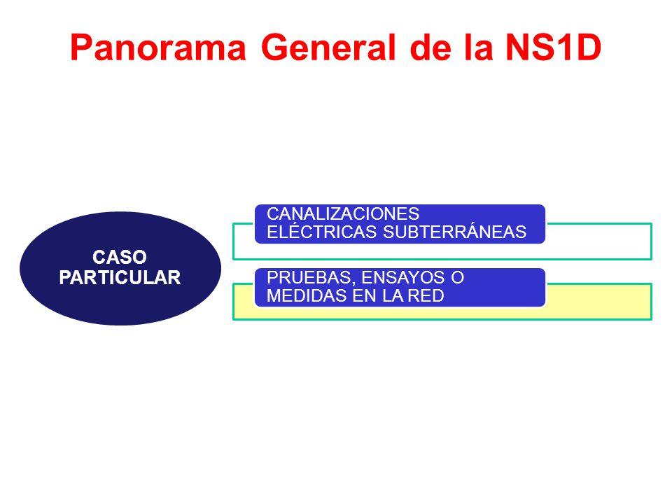 Panorama General de la NS1D CASO PARTICULAR