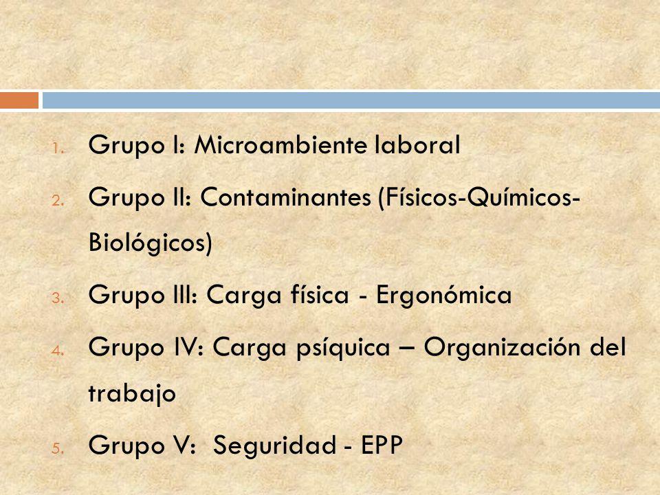 1. Grupo I: Microambiente laboral 2. Grupo II: Contaminantes (Físicos-Químicos- Biológicos) 3. Grupo III: Carga física - Ergonómica 4. Grupo IV: Carga