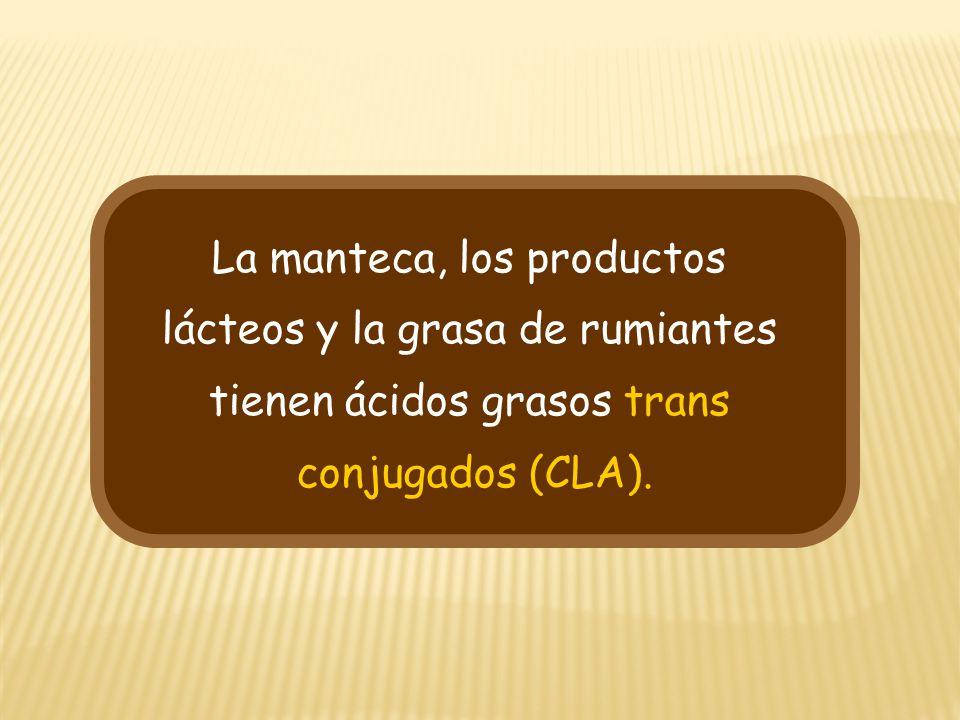 La manteca, los productos lácteos y la grasa de rumiantes tienen ácidos grasos trans conjugados (CLA).