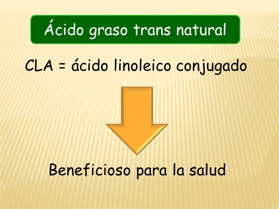 CLA = ácido linoleico conjugado Beneficioso para la salud Ácido graso trans natural