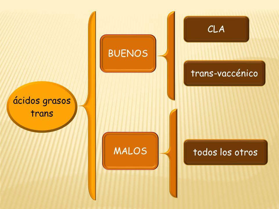 ácidos grasos trans BUENOS MALOS CLA trans-vaccénico todos los otros