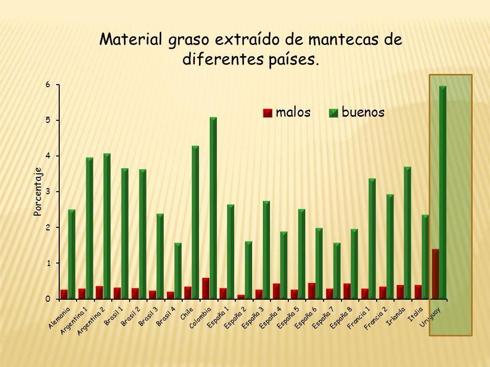 Material graso extraído de mantecas de diferentes países.
