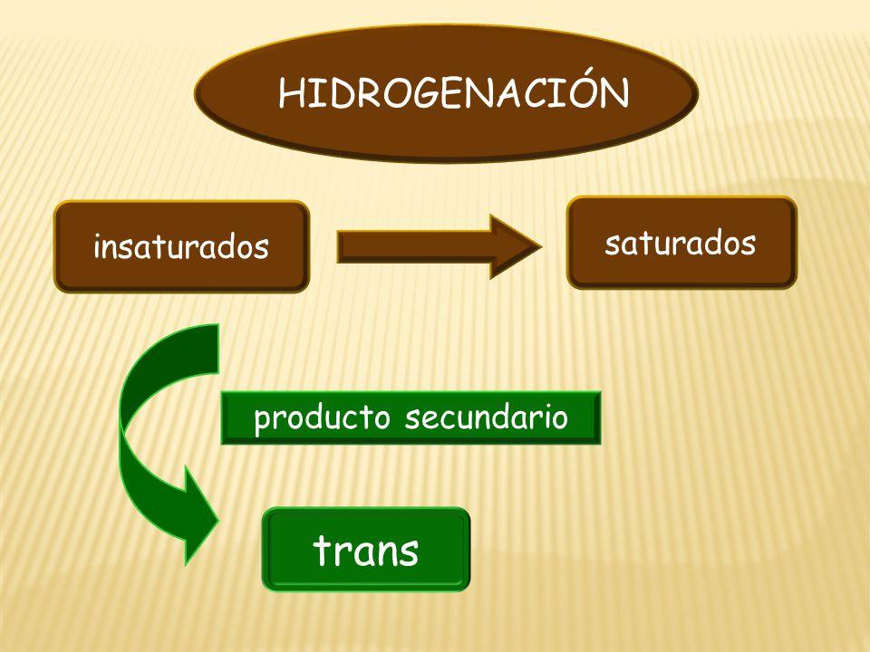 insaturados saturados trans producto secundario HIDROGENACIÓN