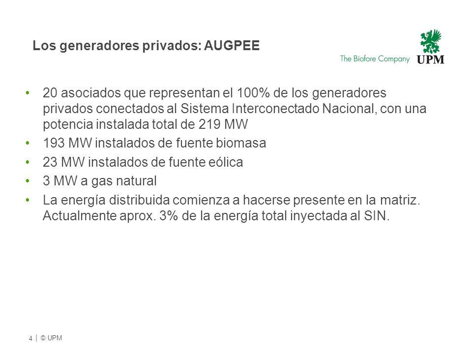 Los generadores privados: AUGPEE 20 asociados que representan el 100% de los generadores privados conectados al Sistema Interconectado Nacional, con una potencia instalada total de 219 MW 193 MW instalados de fuente biomasa 23 MW instalados de fuente eólica 3 MW a gas natural La energía distribuida comienza a hacerse presente en la matriz.