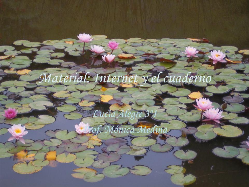 Material: Internet y el cuaderno Lucia Alegre 3º1 Prof. Mónica Medina