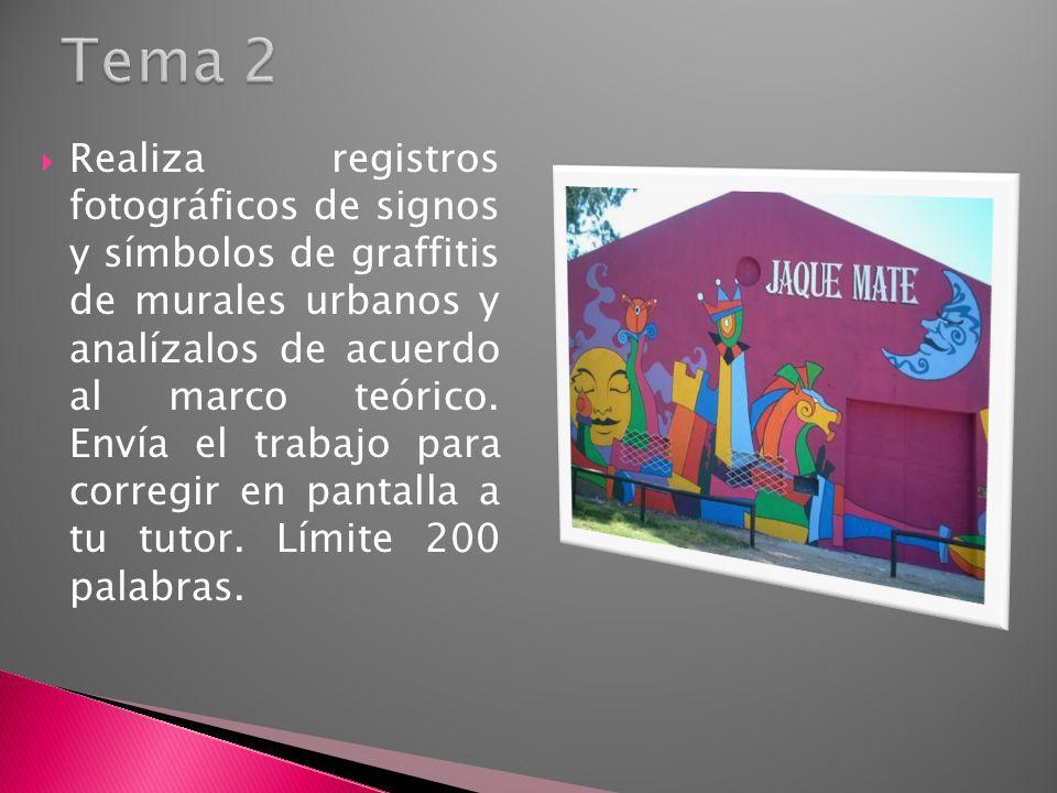 Realiza registros fotográficos de signos y símbolos de graffitis de murales urbanos y analízalos de acuerdo al marco teórico. Envía el trabajo para co