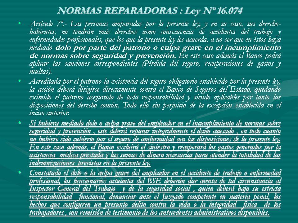 NORMAS REPARADORAS : Ley Nº 16.074 Artículo 7º.- Las personas amparadas por la presente ley, y en su caso, sus derecho- habientes, no tendrán más dere
