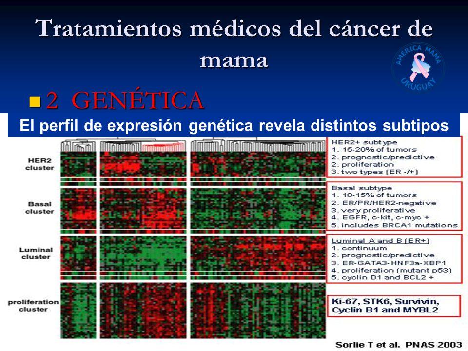 Tratamientos médicos del cáncer de mama 2 GENÉTICA 2 GENÉTICA Dr. AV agosto 2008 El perfil de expresión genética revela distintos subtipos