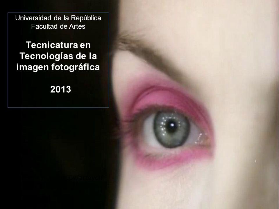 Universidad de la República Facultad de Artes Tecnicatura en Tecnologías de la imagen fotográfica 2013 www.internet.com.uy/arteydif