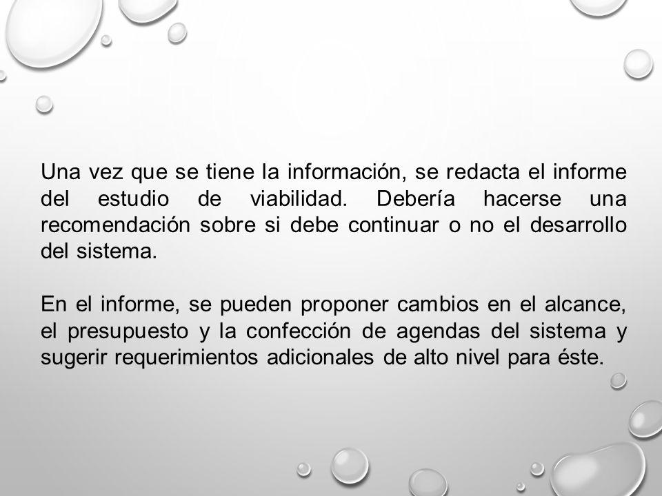 Una vez que se tiene la información, se redacta el informe del estudio de viabilidad. Debería hacerse una recomendación sobre si debe continuar o no e
