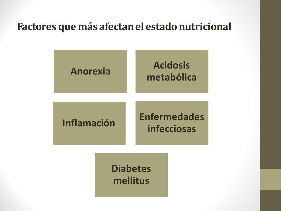 Factores que más afectan el estado nutricional Anorexia Acidosis metabólica Inflamación Enfermedades infecciosas Diabetes mellitus