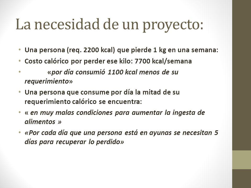 La necesidad de un proyecto: Una persona (req.