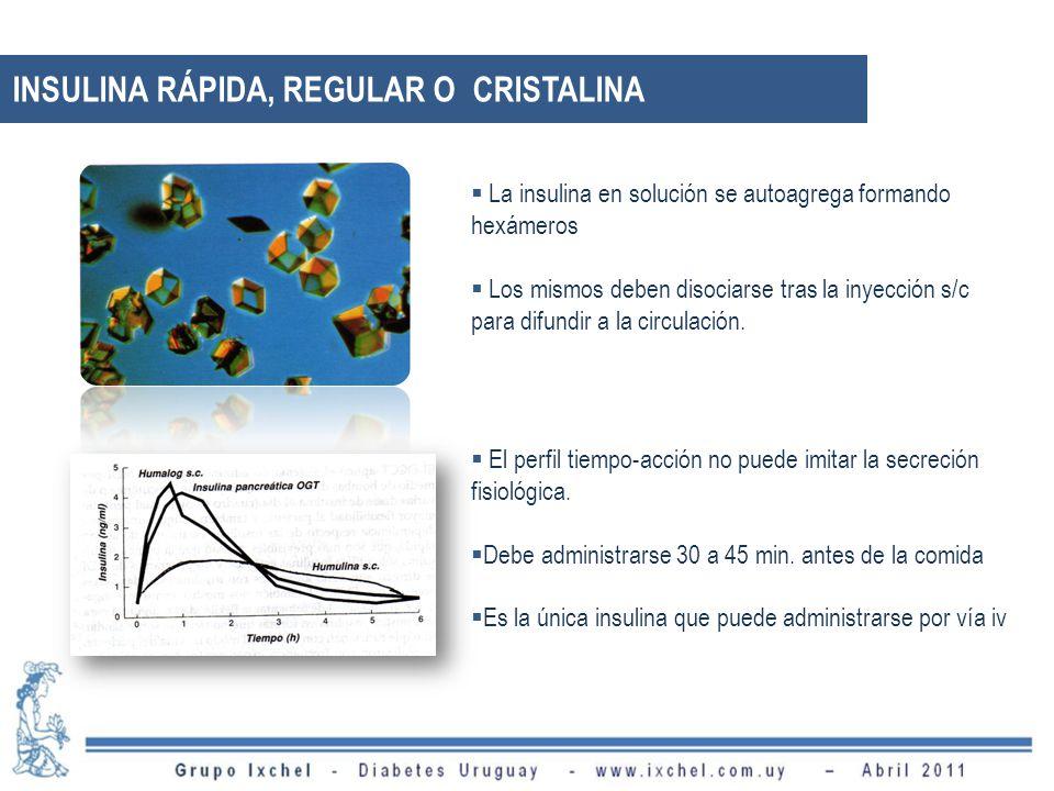 La insulina en solución se autoagrega formando hexámeros Los mismos deben disociarse tras la inyección s/c para difundir a la circulación. El perfil t