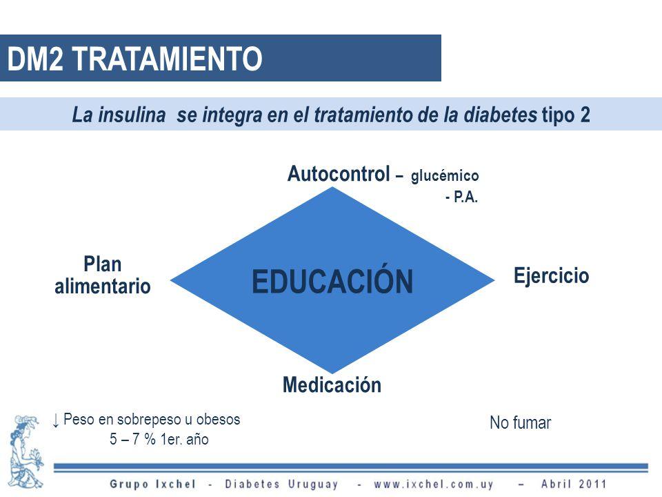 DM2 TRATAMIENTO EDUCACIÓN Autocontrol – glucémico - P.A. Plan alimentario Ejercicio Medicación La insulina se integra en el tratamiento de la diabetes