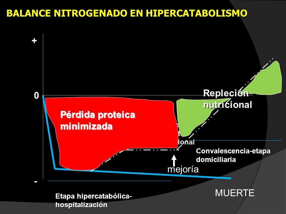 MUERTE Soporte nutricional mejoría Ajuste soporte nutricional Etapa hipercatabólica- hospitalización Convalescencia-etapa domiciliaria Pérdida proteic