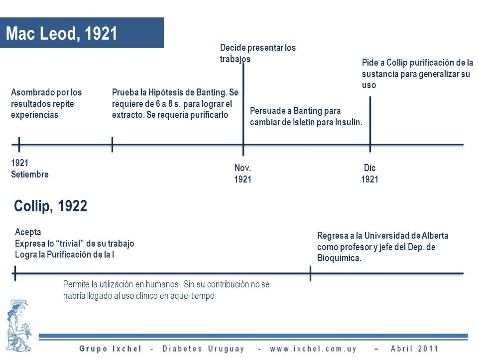 Mac Leod, 1921 Asombrado por los resultados repite experiencias 1921 Setiembre Decide presentar los trabajos Nov. 1921 Prueba la Hipótesis de Banting.
