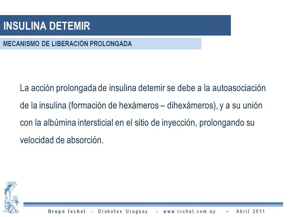 La acción prolongada de insulina detemir se debe a la autoasociación de la insulina (formación de hexámeros – dihexámeros), y a su unión con la albúmina intersticial en el sitio de inyección, prolongando su velocidad de absorción.