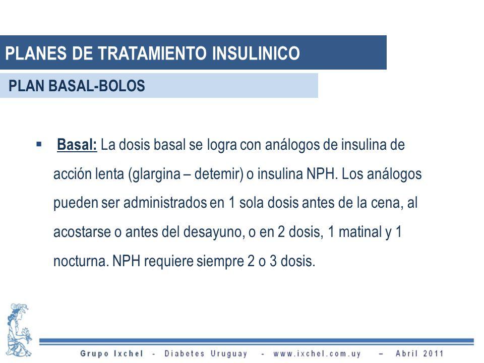 Basal: La dosis basal se logra con análogos de insulina de acción lenta (glargina – detemir) o insulina NPH. Los análogos pueden ser administrados en