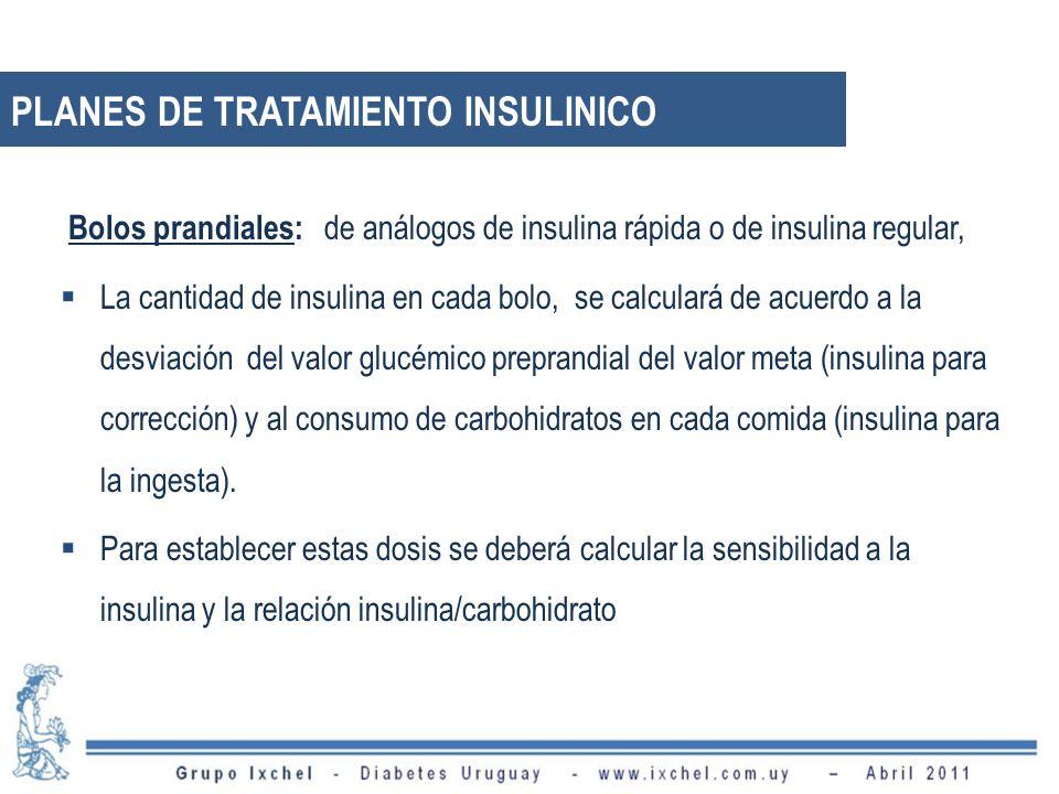 Bolos prandiales: de análogos de insulina rápida o de insulina regular, La cantidad de insulina en cada bolo, se calculará de acuerdo a la desviación del valor glucémico preprandial del valor meta (insulina para corrección) y al consumo de carbohidratos en cada comida (insulina para la ingesta).