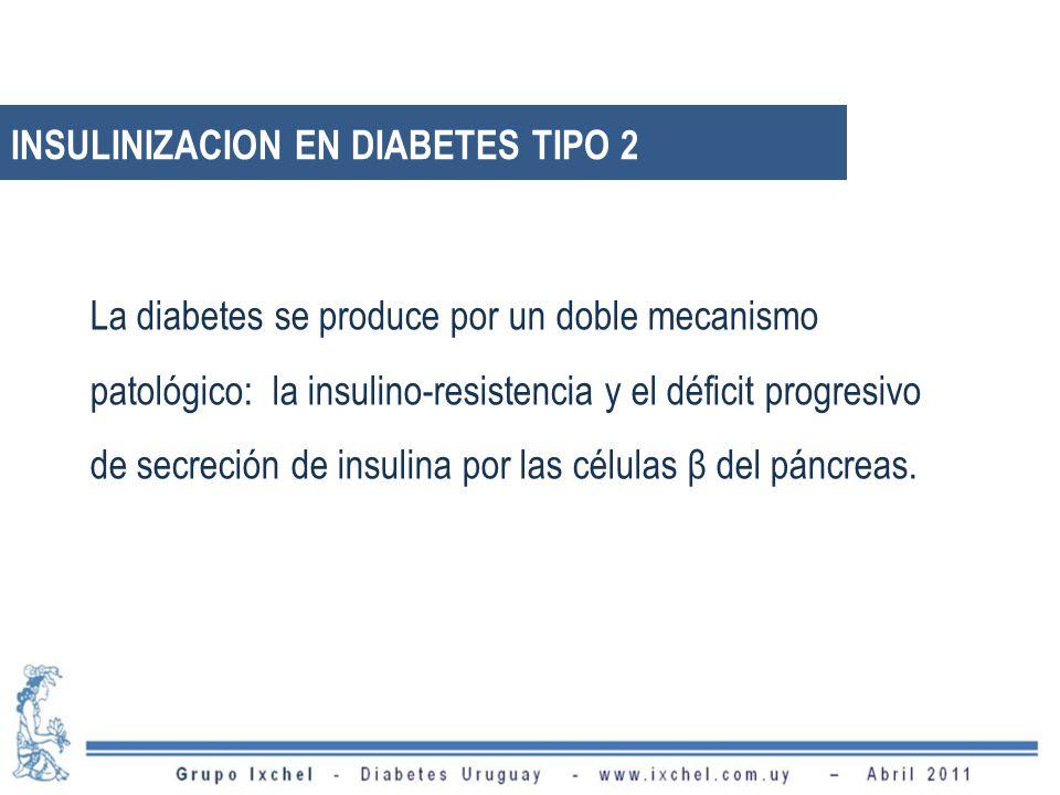 INSULINIZACION EN DIABETES TIPO 2 La diabetes se produce por un doble mecanismo patológico: la insulino-resistencia y el déficit progresivo de secreción de insulina por las células β del páncreas.