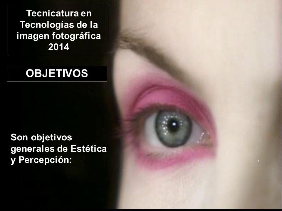 OBJETIVOS Son objetivos generales de Estética y Percepción: Tecnicatura en Tecnologías de la imagen fotográfica 2014