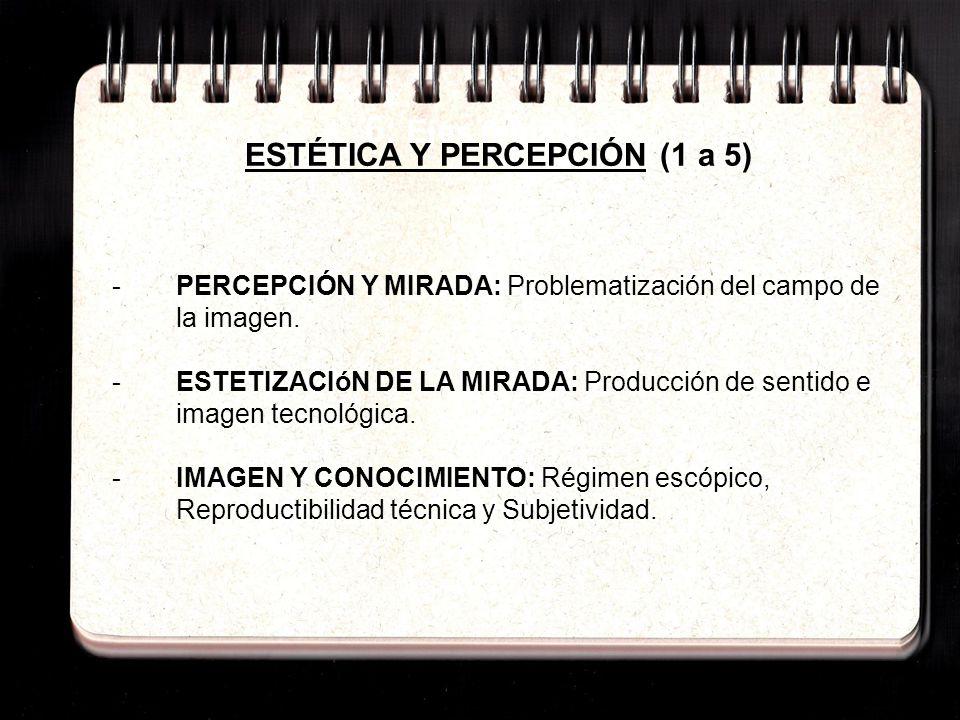 6: Ejes temáticos ESTÉTICA Y PERCEPCIÓN (1 a 5) -PERCEPCIÓN Y MIRADA: Problematización del campo de la imagen. -ESTETIZACIóN DE LA MIRADA: Producción