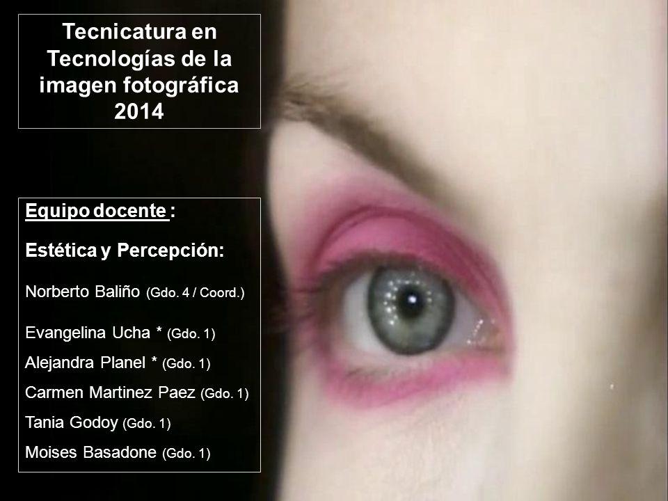 Tecnicatura en Tecnologías de la imagen fotográfica 2014 Equipo docente : Estética y Percepción: Norberto Baliño (Gdo. 4 / Coord.) Evangelina Ucha * (