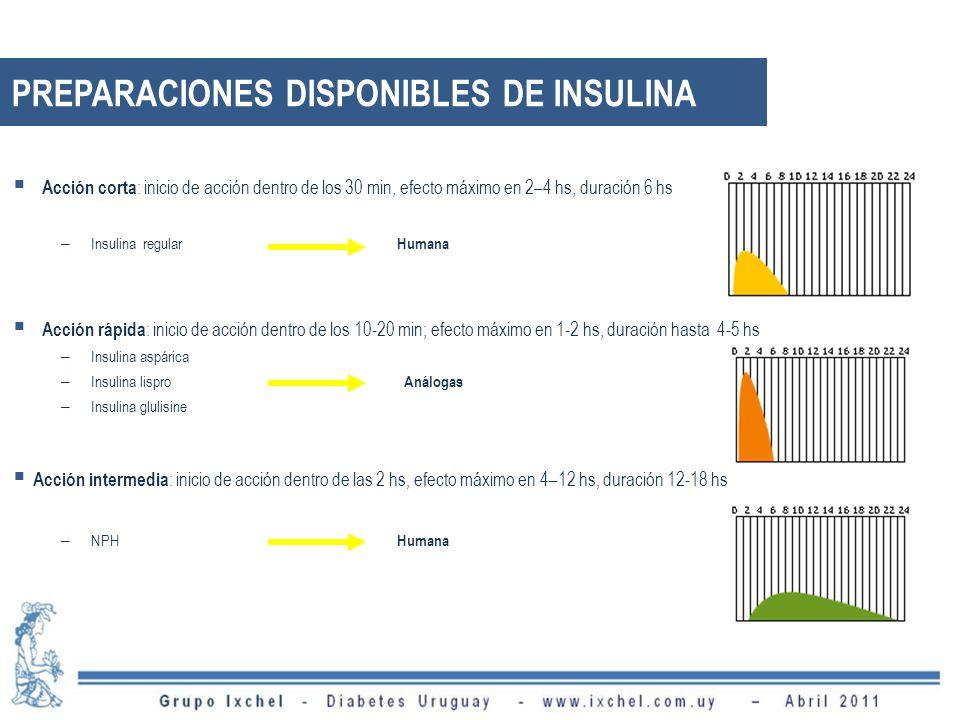 Acción corta : inicio de acción dentro de los 30 min, efecto máximo en 2–4 hs, duración 6 hs – Insulina regular Humana Acción rápida : inicio de acción dentro de los 10-20 min; efecto máximo en 1-2 hs, duración hasta 4-5 hs – Insulina aspárica – Insulina lispro Análogas – Insulina glulisine Acción intermedia : inicio de acción dentro de las 2 hs, efecto máximo en 4–12 hs, duración 12-18 hs – NPH Humana PREPARACIONES DISPONIBLES DE INSULINA