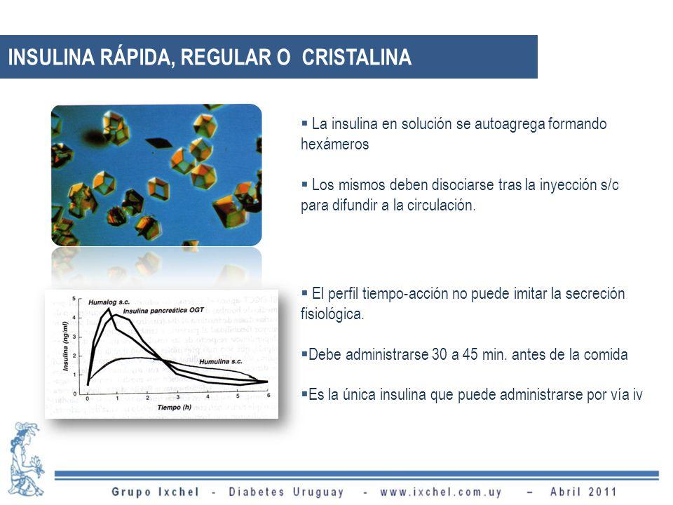 La insulina en solución se autoagrega formando hexámeros Los mismos deben disociarse tras la inyección s/c para difundir a la circulación.